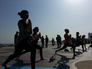 Boardwalk Yoga